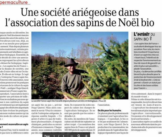 """Article La Dépêche du Midi """"Une société ariégeoise dans l'association des sapins de Noël Bio"""""""